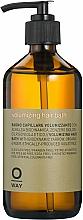 Parfums et Produits cosmétiques Shampooing au gingembre bio - Rolland Oway XVolume