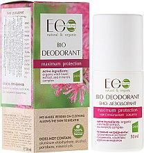 Parfums et Produits cosmétiques Déodorant bio à l'extrait d'hamamélis - ECO Laboratorie Bio Deodorant