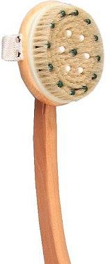 Brosse de massage avec manche en bois, 1901 - Top Choice Wooden Brush Massager