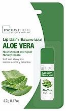 Parfums et Produits cosmétiques Baume à lèvres Aloe Vera - IDC Institute Lip Balm Aloe Vera