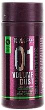 Parfums et Produits cosmétiques Poudre coiffante matifiante - Salerm Pro Line Volume Dust 01 Mattifying Powder