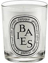 Parfums et Produits cosmétiques Bougie parfumée Baies - Diptyque Baies Candle
