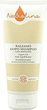 Parfums et Produits cosmétiques Après-shampooing à l'avoine bio - NeBiolina Organic Oat Hair Conditioner