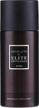 Parfums et Produits cosmétiques Avon Absolute by Elite Gentleman - Déodorant
