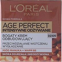 Parfums et Produits cosmétiques Crème de jour au miel de Manuka - L'Oreal Paris Age Perfect Intensive Nutrition 60+ Regenerating Day Cream