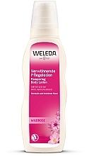 Parfums et Produits cosmétiques Lait à la rose musquée pour corps - Weleda Wildrose Verwohnende Pflegelotion