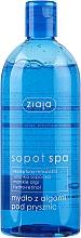 Parfums et Produits cosmétiques Savon liquide à l'extrait algues pour la douche - Ziaja Sopot Spa Shower Gel