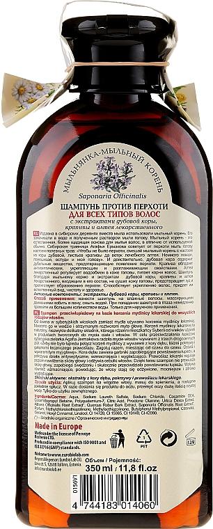 Shampooing à l'extrait d'ortie - Les recettes de babouchka Agafia — Photo N2