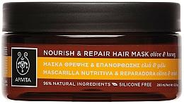 Parfums et Produits cosmétiques Masque réparateur à l'huile d'olive et miel pour cheveux - Apivita Nourish & Repair Hair Mask With Olive & Honey