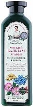 Parfums et Produits cosmétiques Après-shampooing doux aux herbes sibériennes - Les recettes de babouchka Agafia