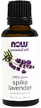 Parfums et Produits cosmétiques Huile essentielle de lavande 100% pure - Now Foods Essential Oils 100% Pure Spike Lavender