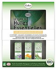 Parfums et Produits cosmétiques Galeo Vital Oils For Summer - Coffret, Les indispensables de l'été (huiles essentielles bio/3x10ml)
