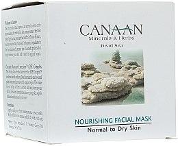Parfums et Produits cosmétiques Masque à l'huile d'avocat et vitamines pour visage - Canaan Minerals & Herbs Nourishing Facial Mask Normal to Dry Skin