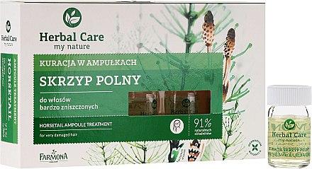 Ampoules capillaires à l'extrait de prêle - Farmona Herbal Care Horsetail Ampoule Treatment