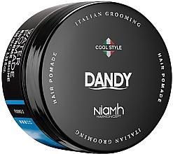 Parfums et Produits cosmétiques Pommade modelante pour cheveux et barbe - Niamh Hairconcept Dandy Extreme Shine Water Pomade