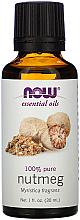Parfums et Produits cosmétiques Huile essentielle de noix de muscade - Now Foods Essential Oils 100% Pure Nutmeg