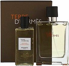 Parfums et Produits cosmétiques Hermès Terre d'Hermès - Coffret (eau de toilette/100ml + gel douche corps et cheveux/80ml)