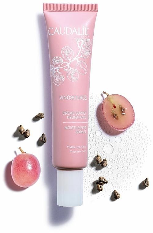 Crème sorbet à l'eau de raisin bio pour visage - Caudalie Vinosource Moisturizing Sorbet — Photo N3