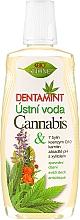 Parfums et Produits cosmétiques Bain de bouche à l'extrait de chanvre et herbes - Bione Cosmetics Dentamint Mouthwash Cannabis