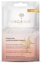 Parfums et Produits cosmétiques Masque nettoyant et apaisant aux extraits bio de miel, abricot et cannelle pour visage - Organic Lab Cleansing And Soothing Mask Cinnamon Apricot And Honey