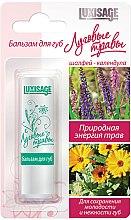 Parfums et Produits cosmétiques Baume à lèvres au calendula - Luxvisage