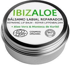 Parfums et Produits cosmétiques Baume à lèvres hydratant - Ibizaloe Repairing Lip Balm