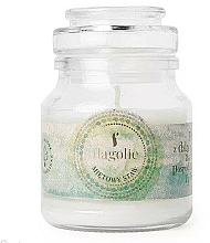 Parfums et Produits cosmétiques Bougie parfumée à la cire végétale, Menthe - Flagolie Scented Candle Boho Mint Pond