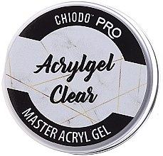 Parfums et Produits cosmétiques Gel acrylique de construction pour ongles - Chiodo Pro Acryl Gel Clear Gel