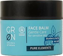 Parfums et Produits cosmétiques Baume à l'extrait de feuilles de myrtille et sel marin pour visage - GRN Pure Elements Blueberry & Sea Salt Face Balm
