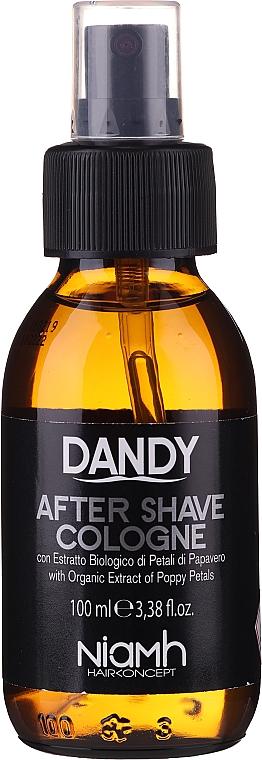 Eau de Cologne après-rasage - Niamh Hairconcept Dandy After Shave Aftershave Cologne